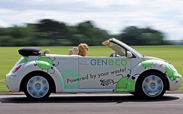 GENeco Bio-Bug